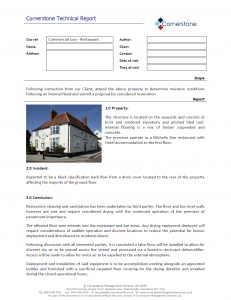 cornerstone-example-report-3