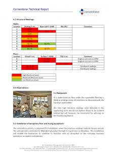 Cornerstone-example-report-1